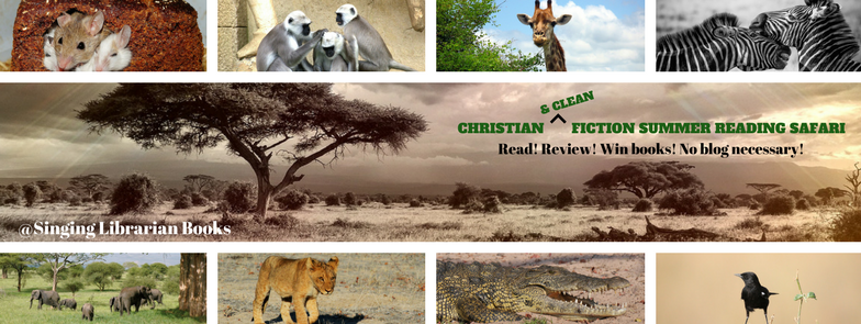 Christian Fiction Summer Reading Safari