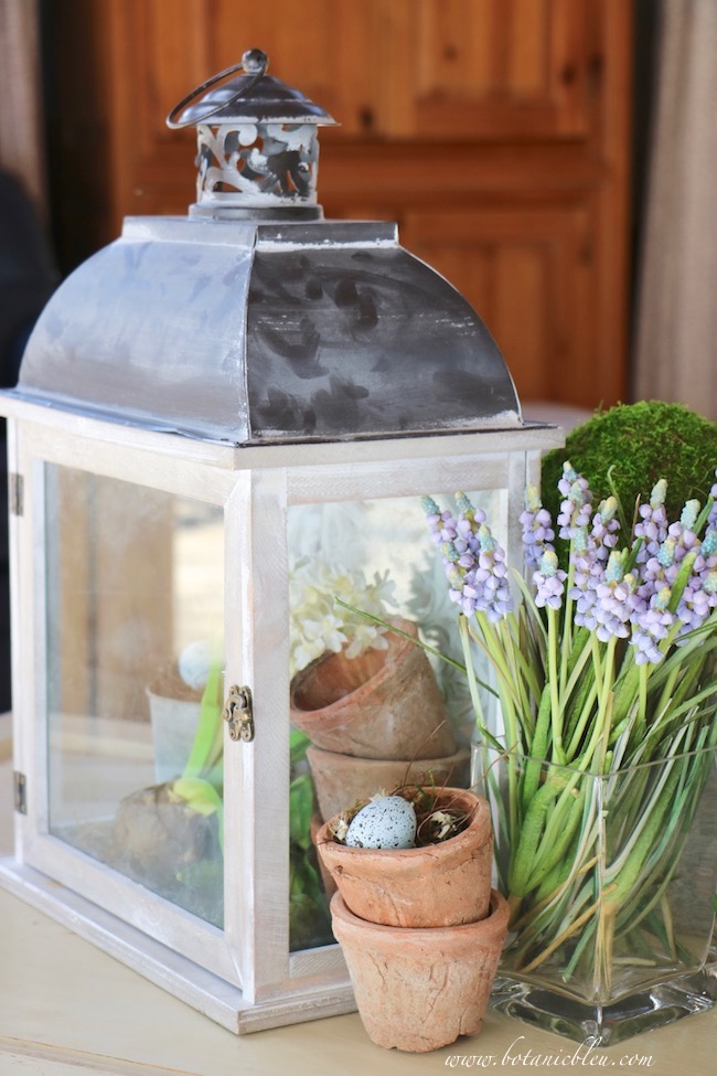 Spring Vignette With French Design Lantern Botanicals and Bird's Egg