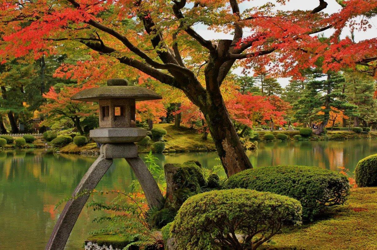 Nikmati Daun Momiji di Taman Kenrokuen