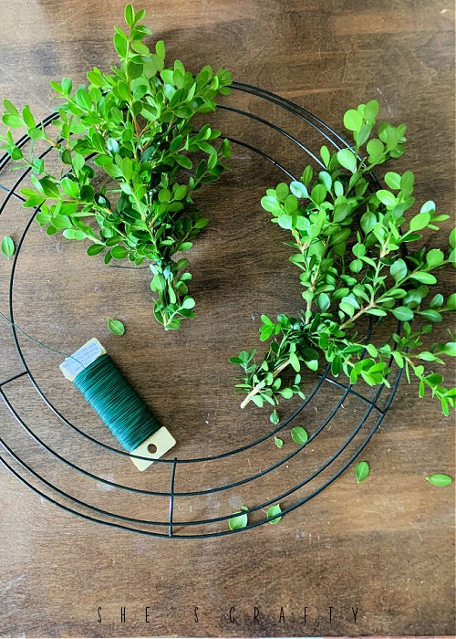 Bush clipping bunches to make a boxwood wreath