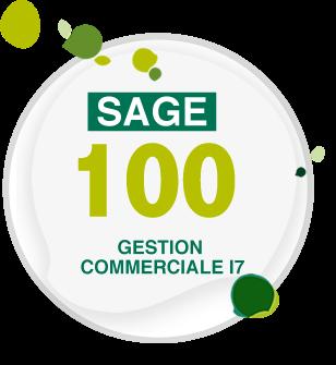 CRACK I7 GRATUIT 100 COMPTABILITÉ SAGE TÉLÉCHARGER