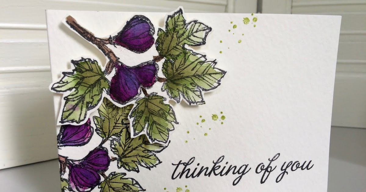 Laura 39 s creative moments beautiful flora ii 3 cards - Am pm catalogus ...