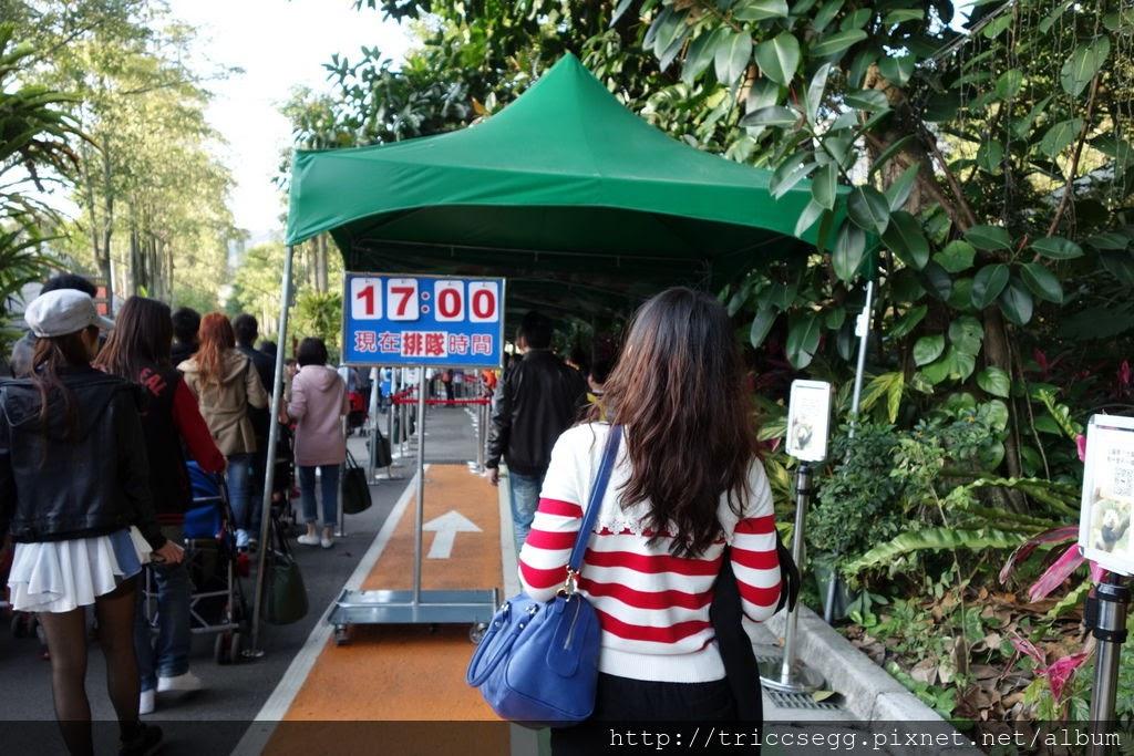 台北動物園(28).jpg