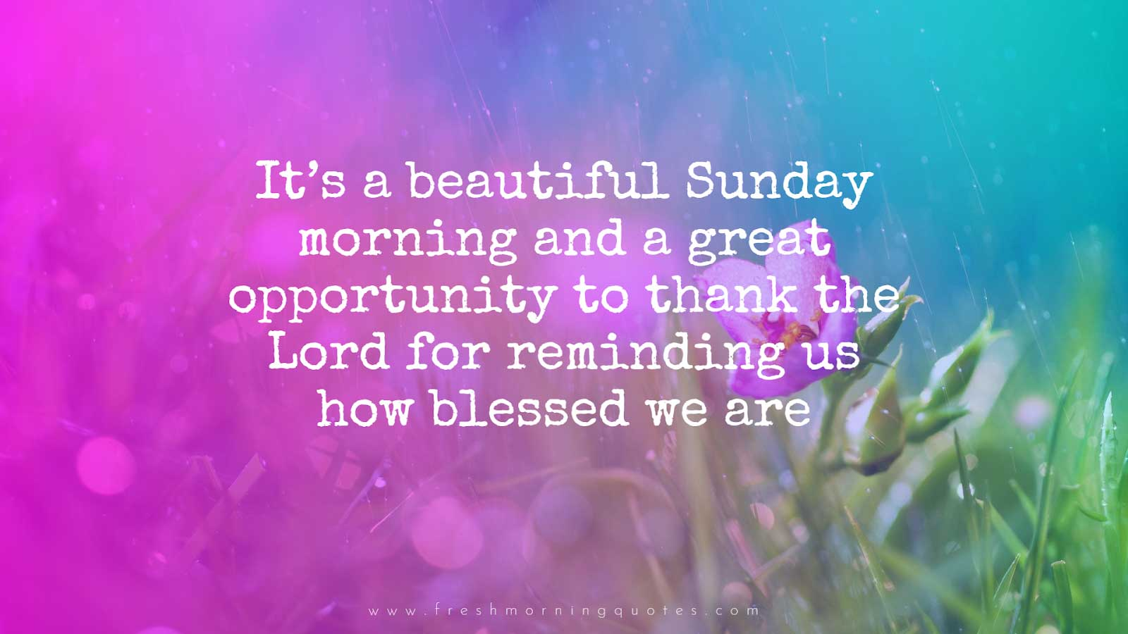 ITS A BEAUTIFUL SUNDAY - SUNDAY QUOTES IMAGES