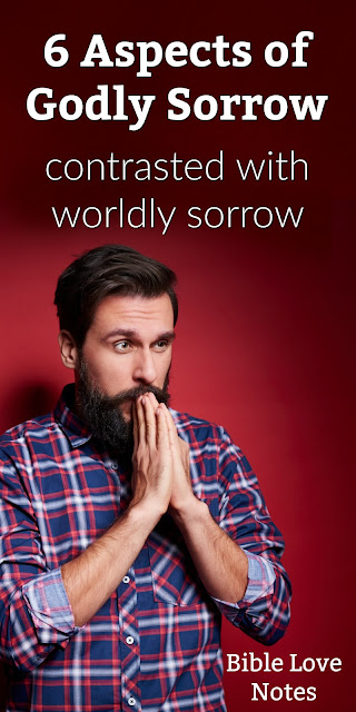 In 2 Corinthians Paul describes the godly sorrow (godly conviction) of the Corinthians. This passage describes 6 Aspects of Godly Sorrow. #Repentance #Devotions #BibleLoveNotes #Bible
