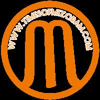 timesofmizoram.com