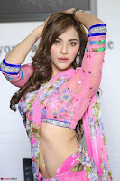 Actress Angela Krislinzki in Pink Saree Blouse Exclusive Pics March 2017 ~  047.JPG