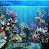 Terumbu karang (coral reef) Klasifikasi Morfologi dan Penyebarannya