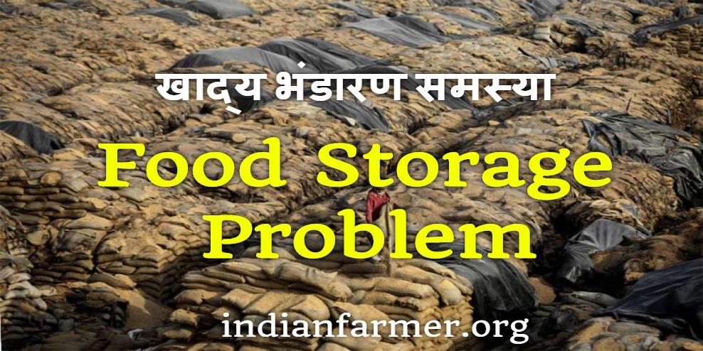 Food Storage Problem