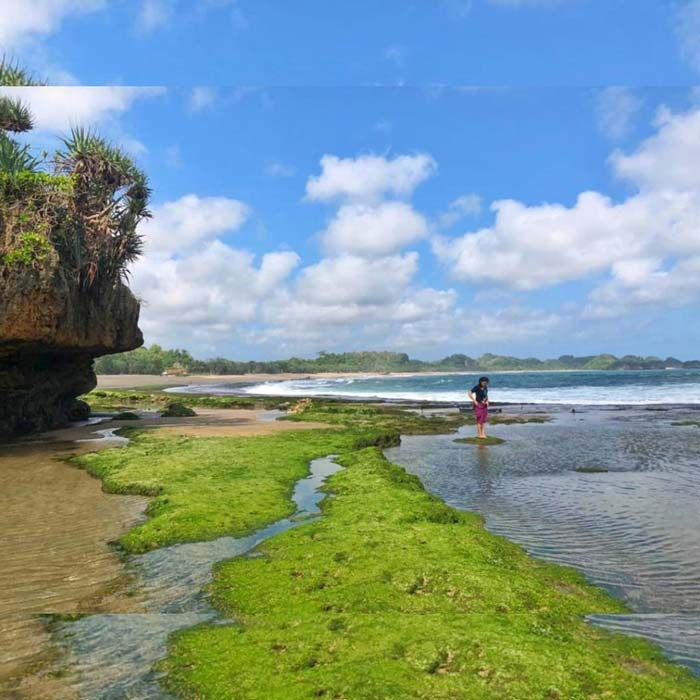 Harga Tiket Masuk Pantai Jolangkung Malang