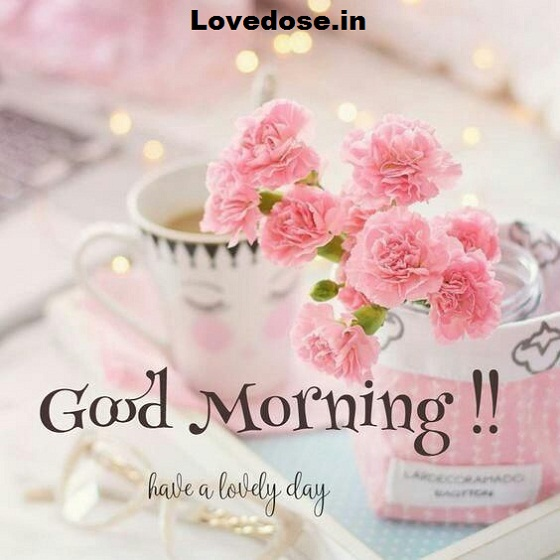 good morning flower wishes