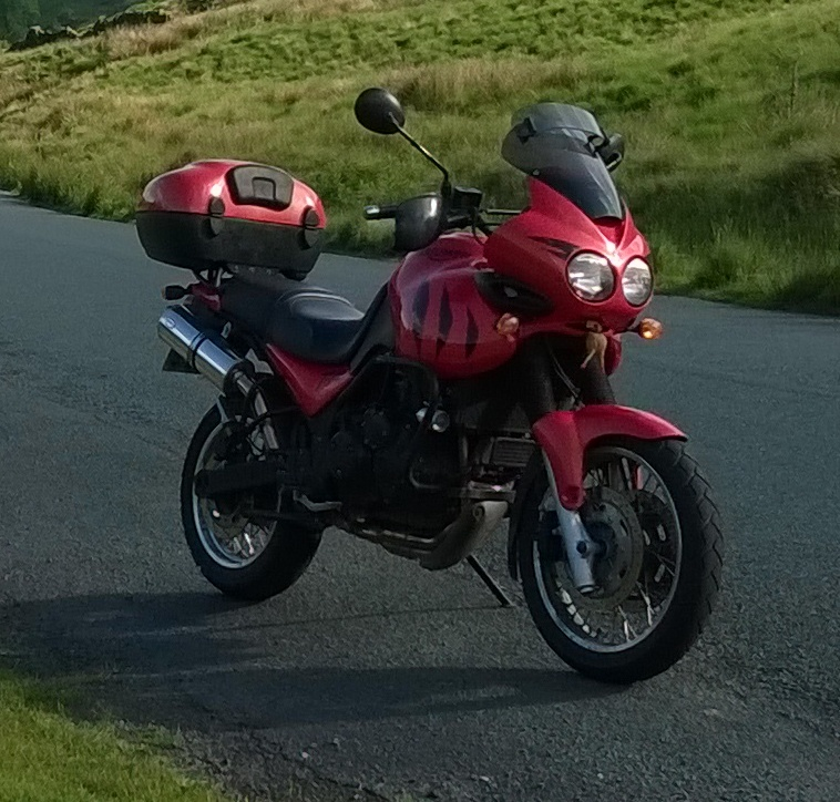 The Turtle And The Chicken Go Riding Triumph Tiger 955i 2003