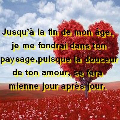 Whatsapp Quotes 2014 Les Meilleurs Mots Et Phrases Damour