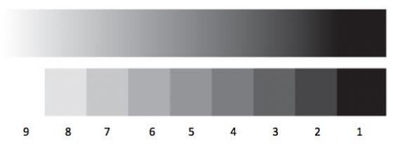 pertemuan kali ini aku akan share ilmu perihal adonan warna Cara Mencampur Warna & Contoh Campuran Warna