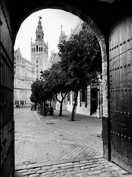 Giralda desde Plaza del Triunfo