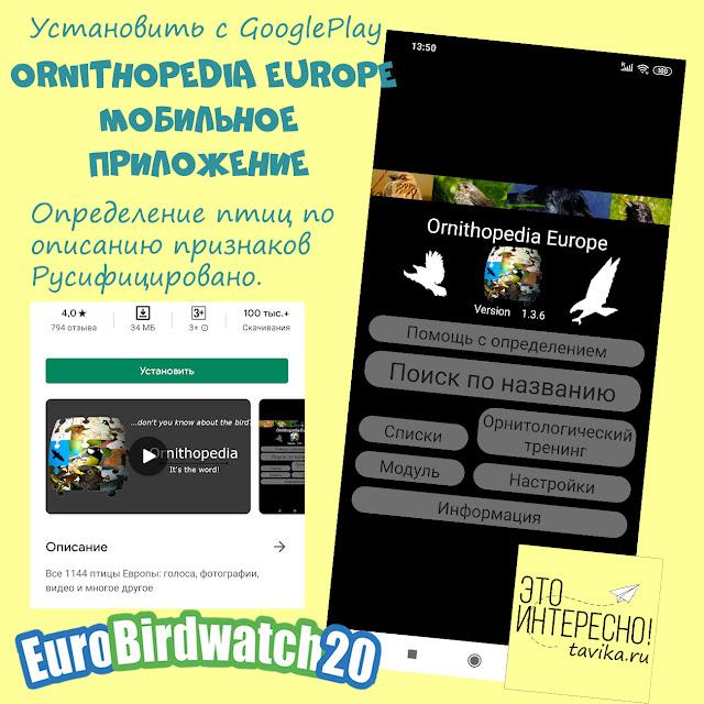 мобильное приложение для определения птиц
