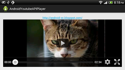 Simple example using YouTube Android Player API