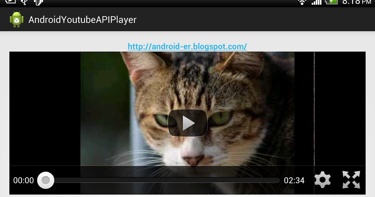 Android-er: Simple example using YouTube Android Player API