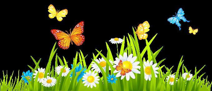 Flor contenido primavera, jardín de flores s, mariposas en flores animada ilustración, fondo de pantalla de la computadora, hierba png by: pngkh.com