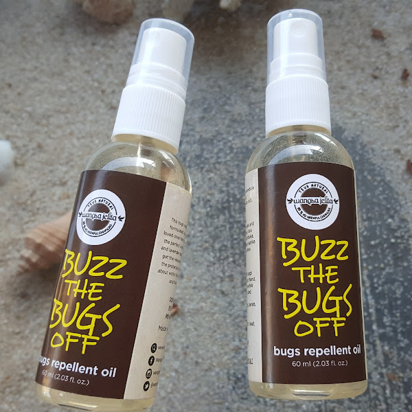 Review : Buzz The Bugs Off