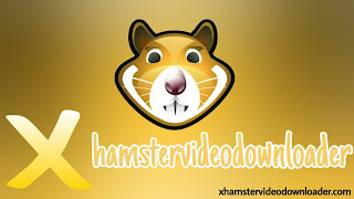 Xhamstervideodownloader Screenshot