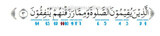 Hukum Tajwid Surat Al Anfal Ayat 3