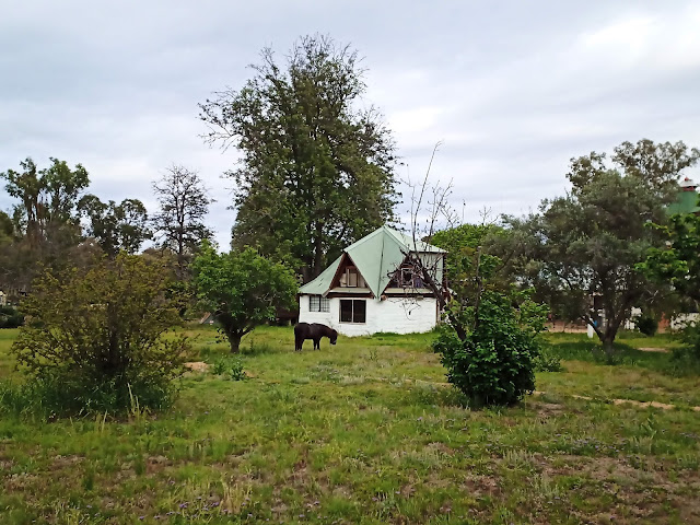 Pony and farm building