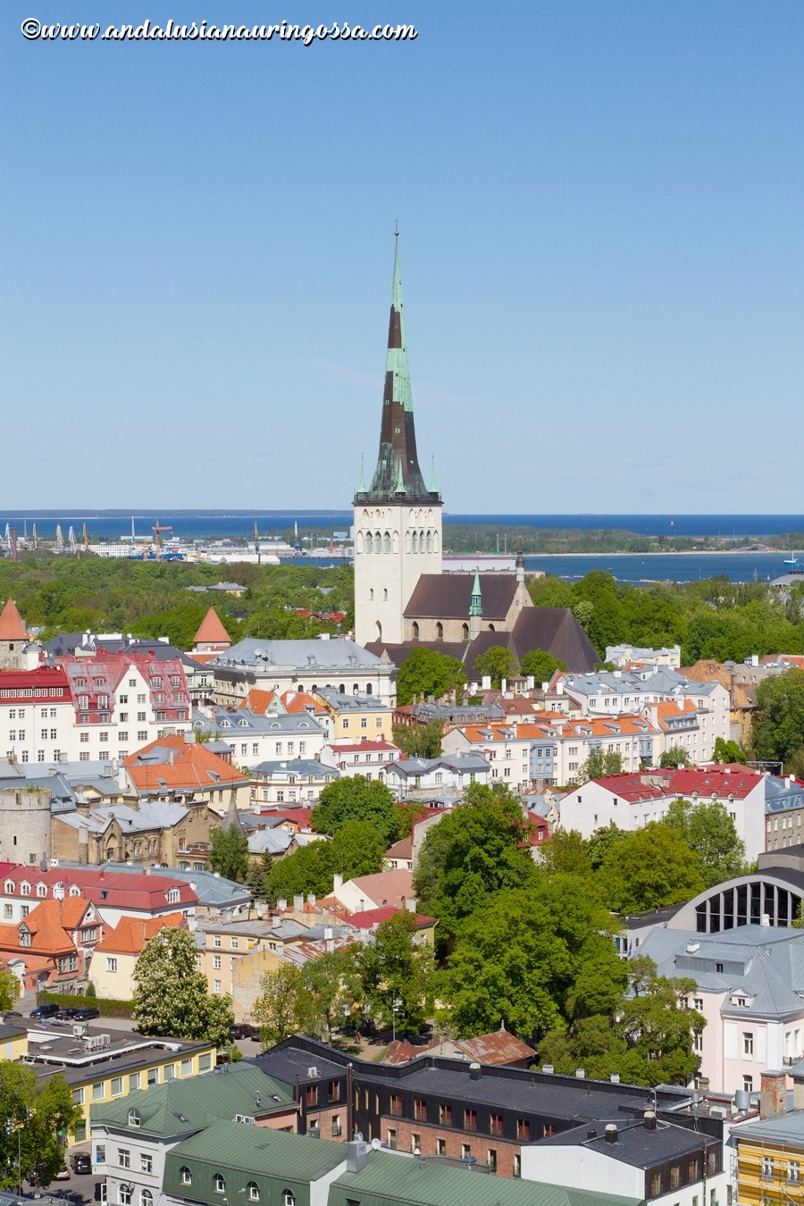 10 fascinating facts about Estonia_10 things you did not know about Estonia_Under the Andalusian Sun_travel blog_4