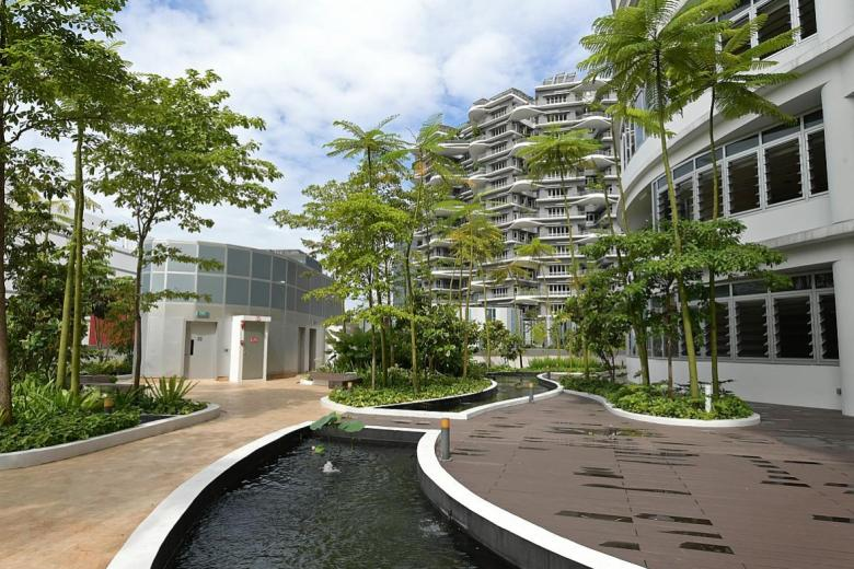 Under the Biophilic Town Framework, trees planted in new HDB projects may be chosen for how effective the species is in removing air pollutants.