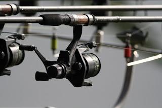 риболов на шаран