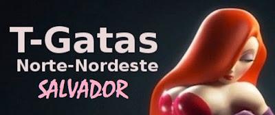 http://tgatasnortenordeste.blogspot.com.br/p/salvador.html
