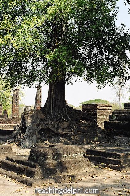 travel alert, reaching delphi, temple