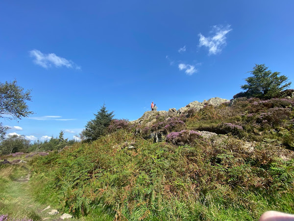 Family Walk From Grizedale Visitor Centre