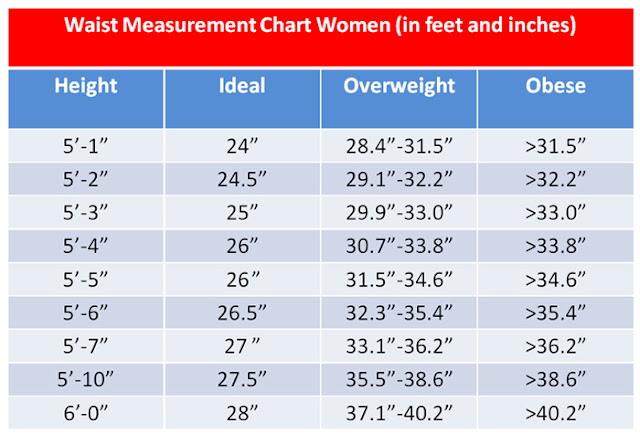 waist measurement chart