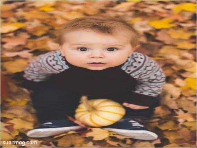 صور اطفال اولاد 7 | Baby Boys Photos 7