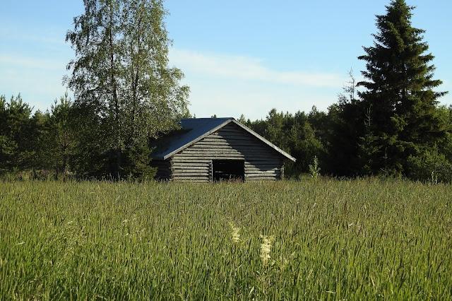 Heinäpelto, vanha lato, heinäkuu