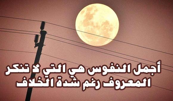 اجمل اشعار عن رد الجميل خواطر عن رد الجميل كلمات عن رد المعروف