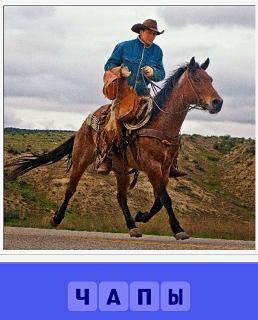 на лошади скачет ковбой одетый в чапы и шляпу