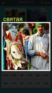 разукрашенная святая корова которую на поводке ведет мужчина
