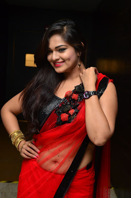 Saree Hot Pics, beautiful actress hot in saree, actress hot navel images in saree, navel sarees hot actress