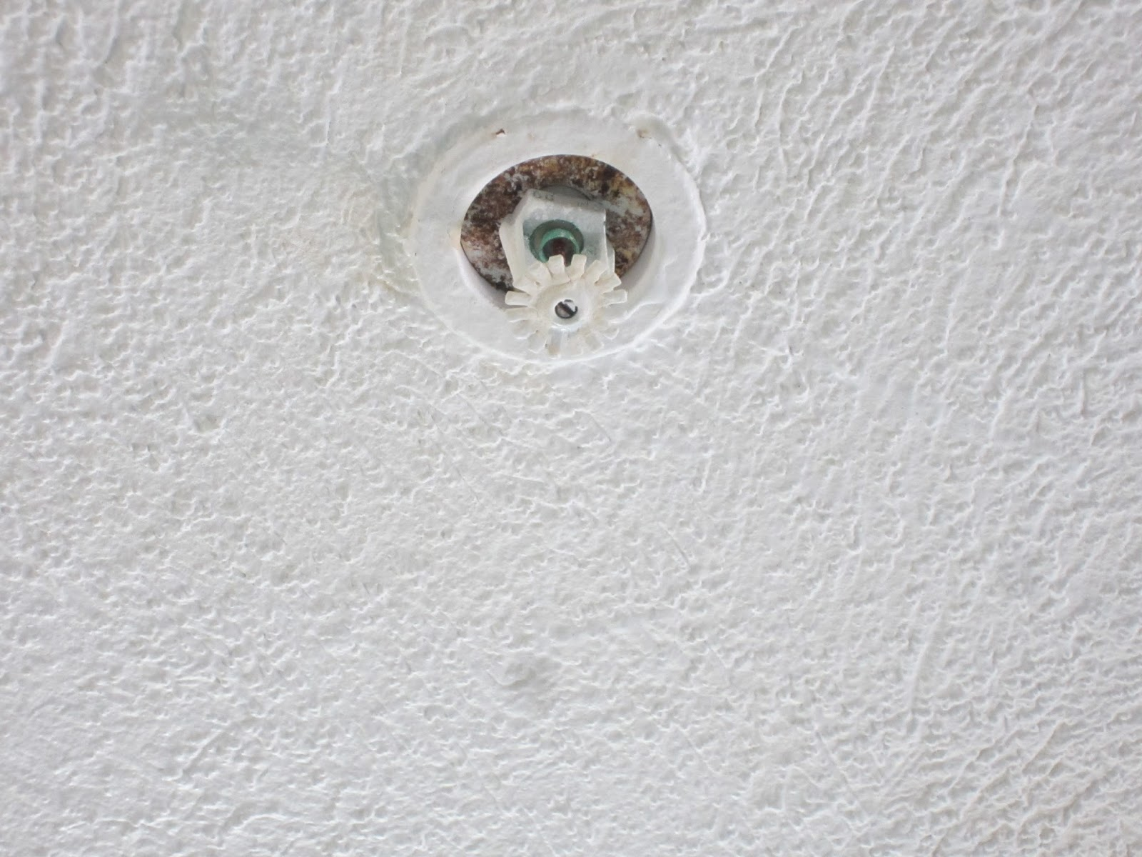 Fire Protection Deficiencies Corroded Fire Sprinkler Heads
