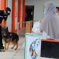 Rutan Makassar Dijaga Anjing Pelacak, Untuk Mencegah Masuk Narkoba