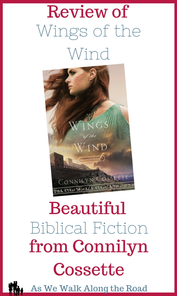 Review of Wings of the Wind by Connilyn Cossette