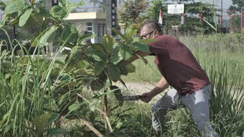 Walikota Payakumbuh Canangkan Pupuk Organik NPK Taniku
