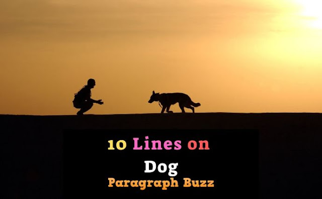 10 Lines on Dog in English