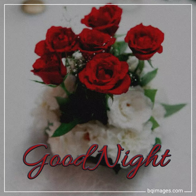 good night flowers download