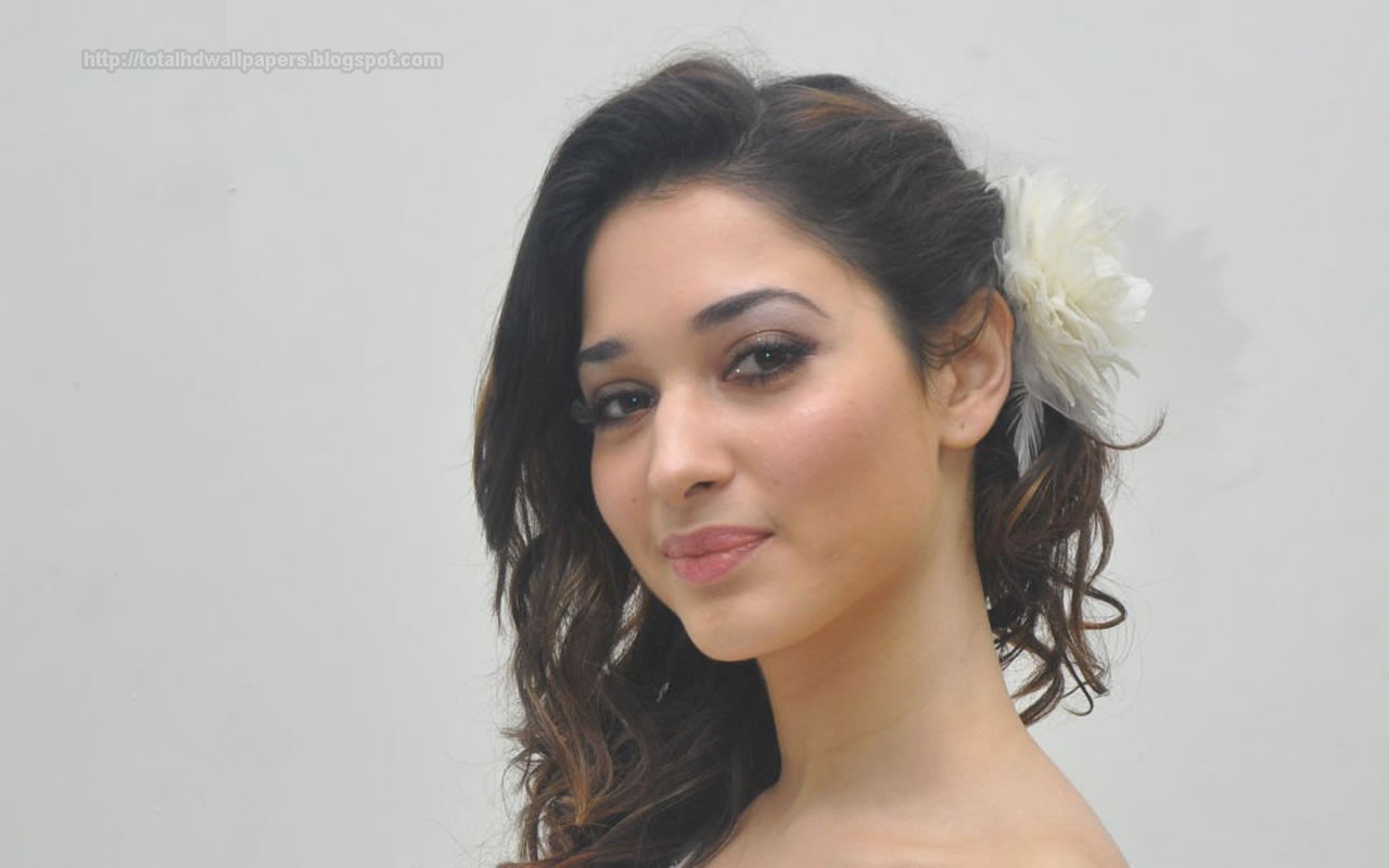 South Indian Actress Hd Wallpaper Best Collection Of South Indian