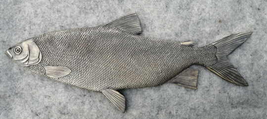 рыба чир