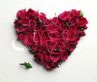 قلب شكلة جميلة لونه احمر بالورود