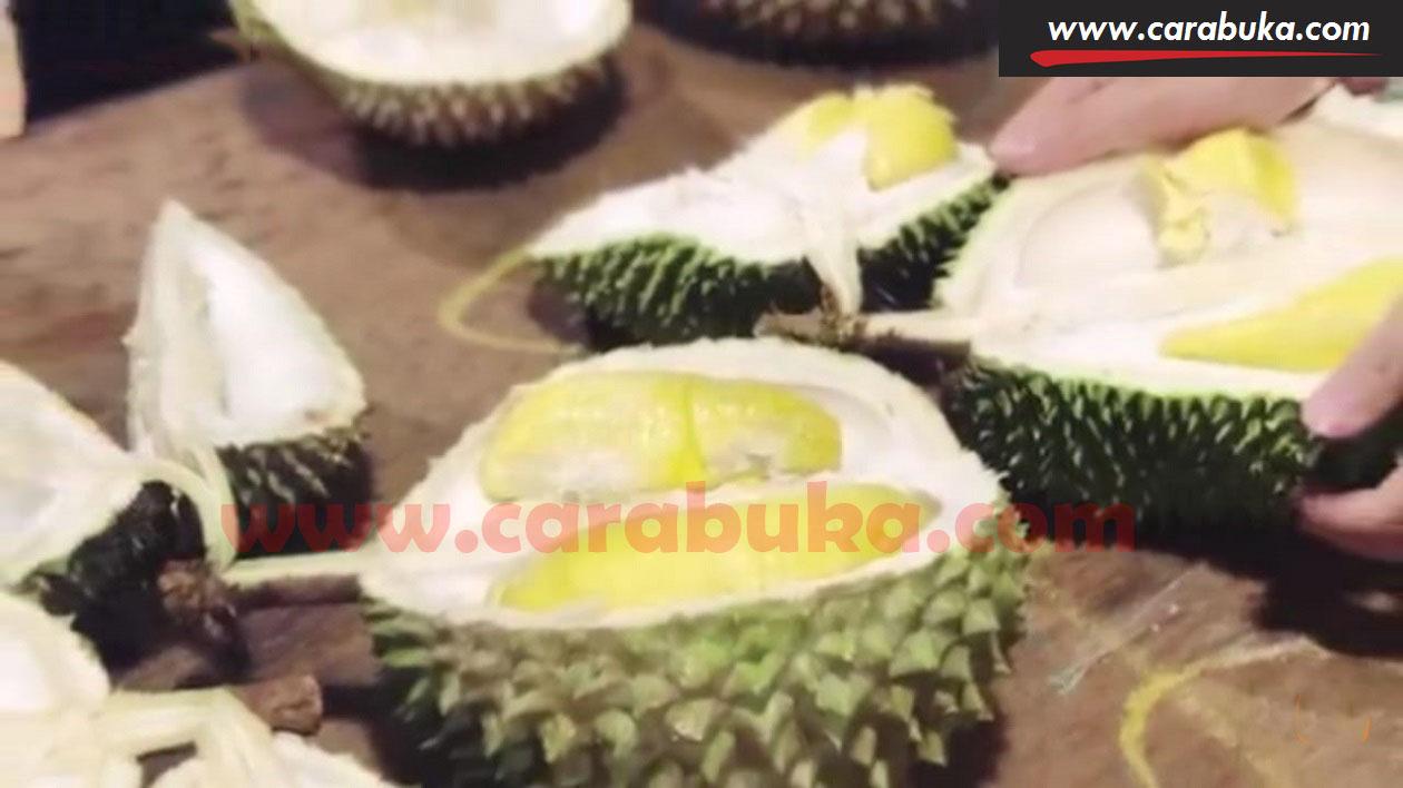 Tips Cara Memilih Durian Matang dan Manis 7